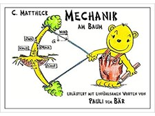 BOEK PAULI   MECHANIK AM BAUM